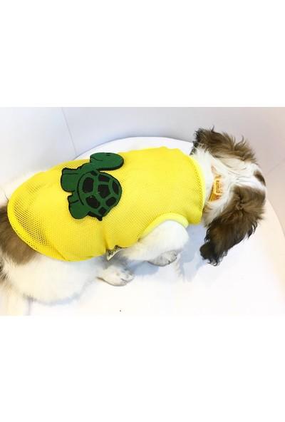 Dogi& Dog Turtle Atlet
