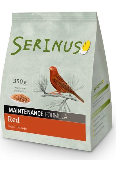 Serinus Maintance Formula Red 350 Gr Kanarya Yemi