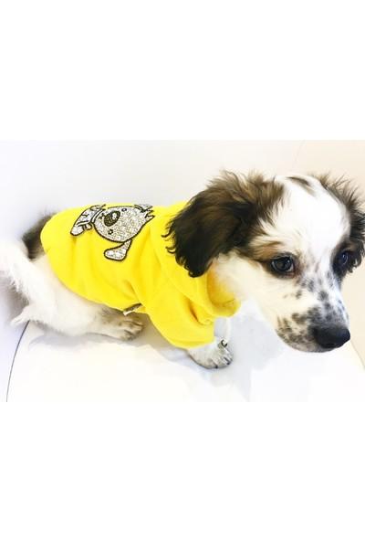 Dogi & Dog Dogi Taşlı Sweat , Köpek Sweat