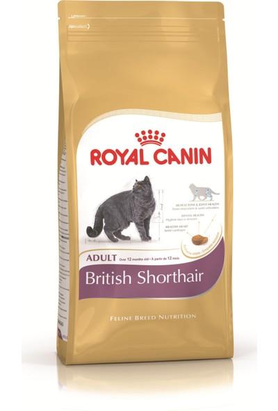 Royal Canin British Shorthair 10 Kg.