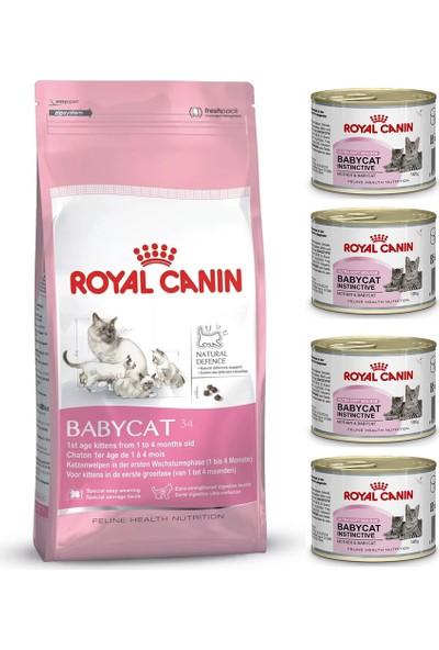 Royal Canin Mother&Baby Cat 34 Anne Ve Yavru Kedi Mamasi 4 Kg 4 Adet Royal Canin BabyCat Instinctive Yavru Kedi Konservesi 195 Gr Hediye