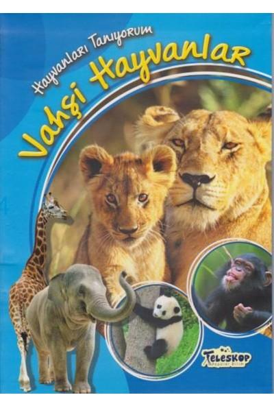Vahşi Hayvanlar - Cuberdon Books
