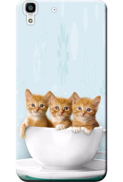 Kılıf Merkezi Huawei Y6 Yavru Kediler Baskılı Silikon Kılıf