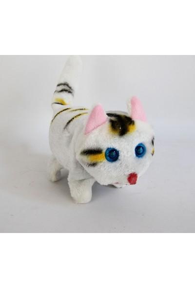 Can Ali Toys Oyuncak Pilli Yürüyen Kedi 18 cm