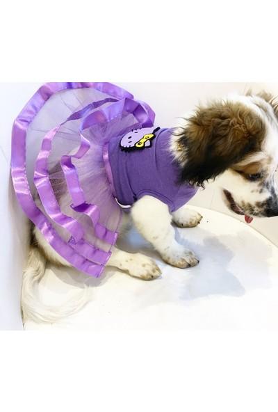 Dogi & Dog Caty Tütü Köpek Elbisesi-Köpek Kiyafeti-Kedi Kiyafeti,-Kedi Elbisesi
