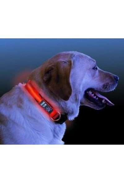Peak Bays Işıklı Köpek Tasması