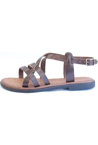 Shop And Shoes 155-1005 Kadın Sandalet Kahve