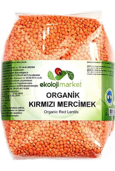 Ekoloji Market Organik Kırmızı Mercimek 1 Kg