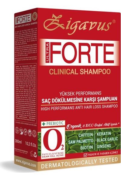 Zigavus Forte Ultra Clinical Yağlı Saçlar İçin Şampuan 300 ML