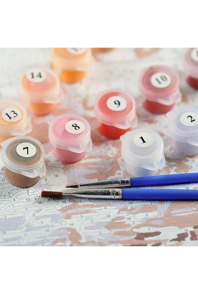 Doruk Baskı Sayılarla Boyama Seti - Renkli Balonlar
