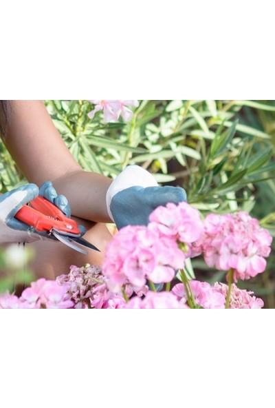 Go İthalat Çok Amaçlı Bahçe Makası