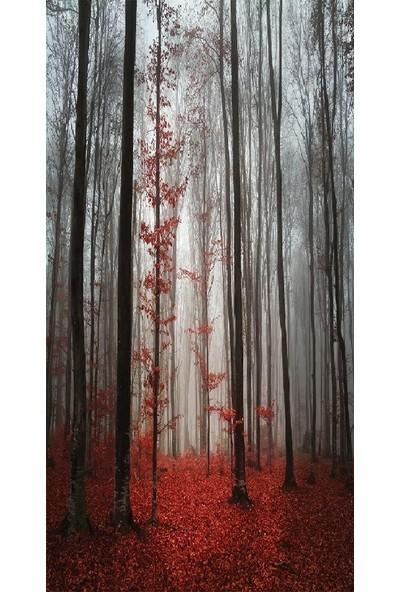 Henge Baskılı Tekli Fon Perde Sonbahar Yapraklar Orman Doğa Manzaralı