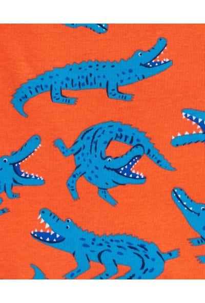 Carter's Carters Küçük Erkek Çocuk 4'lü Pijama 2K629910