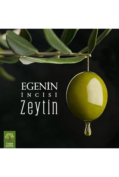 Coşar Zeytin 5 kg Orta Boy Siyah Zeytin ve 5 Lt Erken Hasat Sızma Zeytinyağı