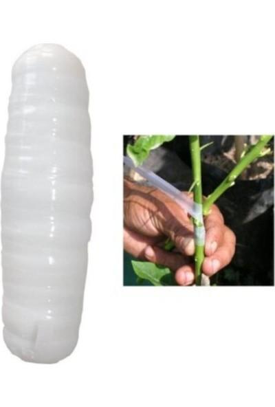 Pinax Aşı Bandı Ağaç ve Bitkiler Için
