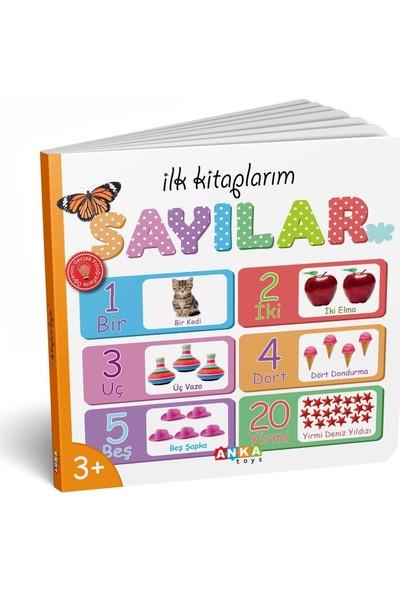 Diy-Toy Ilk Kitaplarım Serisi Eğitici 6lı Set