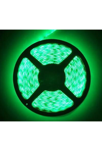 Taled 5050 3 Çipli Iç Mekan Şerit LED 12 Volt 5 Metre Double Pcb