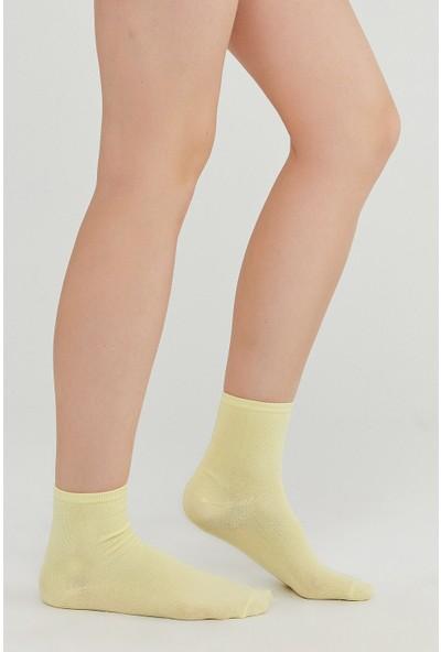 Penti Çok Renkli Colorful 4lü Soket Çorap