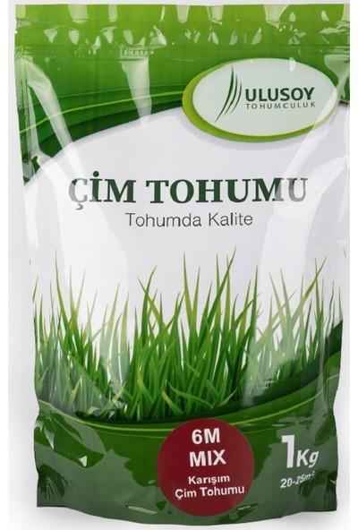 Ulusoy Tohumculuk 6m Mix Çim Tohumu