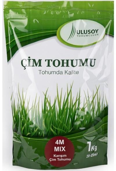 Ulusoy Tohumculuk 4m Mix Çim Tohumu