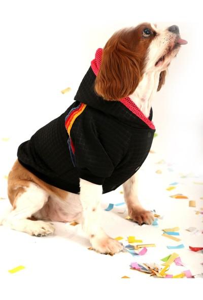 Oxy Official Oxy Doxy Önden Çıtçıtlı Siyah Koruyucu Köpek Sweati