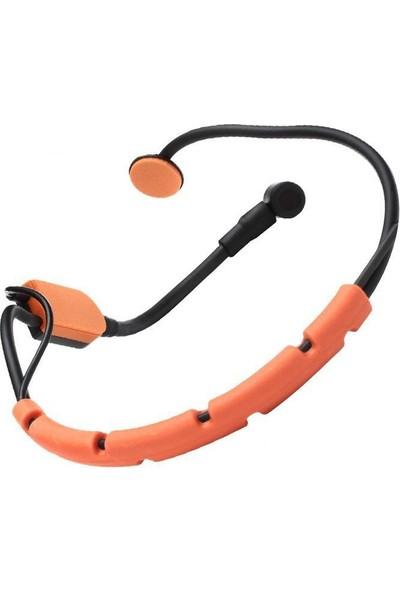 Shure SM31FH-TQG Fitness Kafa Mikrofonu