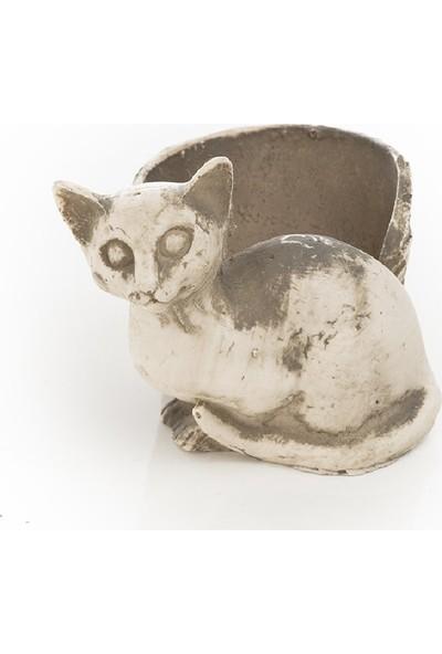 Garba Donna Kedi Saksı 3'lü Set