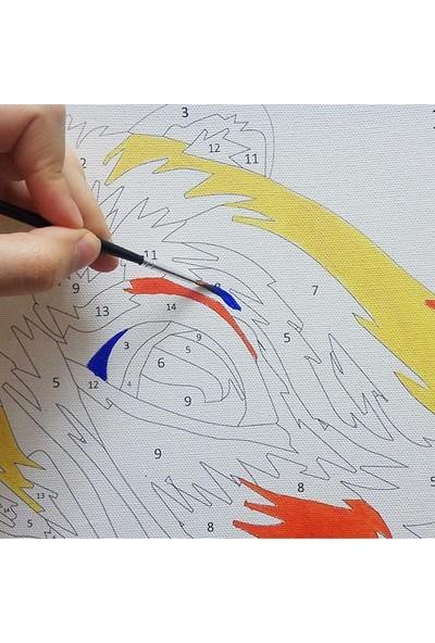 hobi24 Sayılarla Boyama Seti - Numaralı Tablo Boyama 40 x 50 cm - Şemsiye