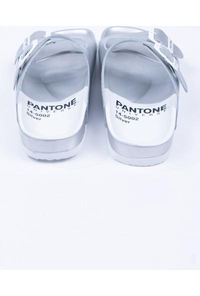 Pantone Gümüş Gerçek Deri Terlik
