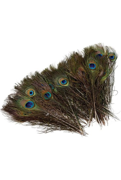 Nettenevime Tavuskuşu Tüyü Gerçek Tüy 80 cm
