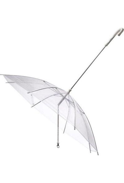 Köpek Gezdirme Şemsiyesi