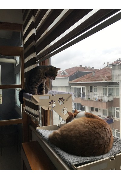 Ata Home Cama Yapışan Ahşap Kedi Yatağı Gri