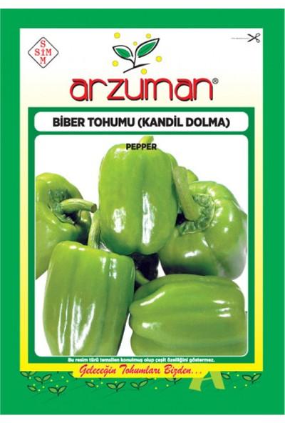 Arzuman 4 Adet Yalova Fidan Market Kandil Dolma Biber Tohumu