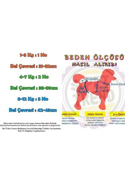 Pettrend Mini Kedi-Köpek Çamaşırı Regl Kilodu