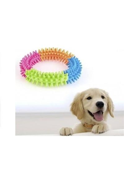 Matesstore Köpek Isırma Çemberi Diş Kaşıma Çiğneme Oyuncak Temizleme Silikon