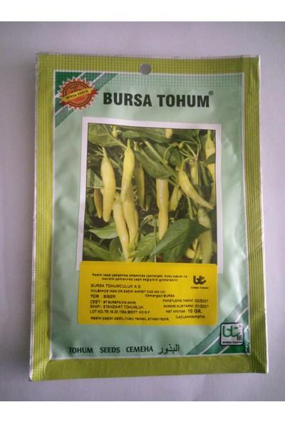 Dörtbudak Bt Burbiye Akın Biber Tohumu 10 gr