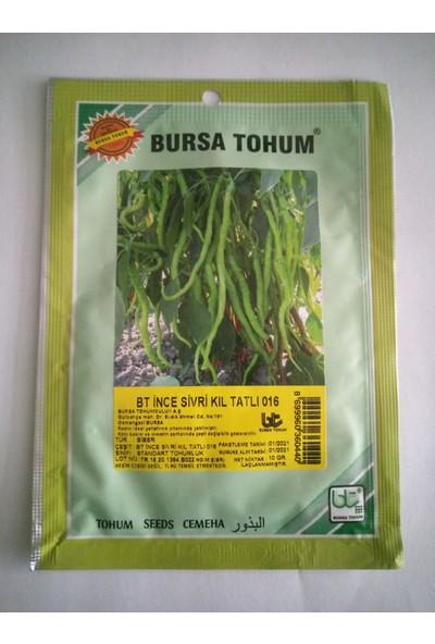 Dörtbudak Bt Ince Sivri Kıl Tatlı Biber Tohumu 10 gr