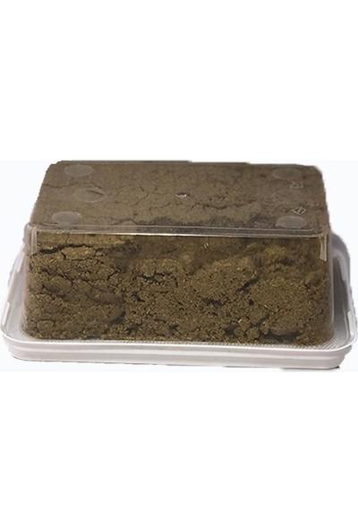 Hazra Kimyon 100 gr Vakumlanmış Paket