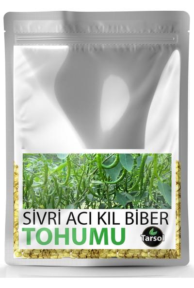 Sivri Acı Kıl Biber Tohumu Yüksek Verim 30 'lu