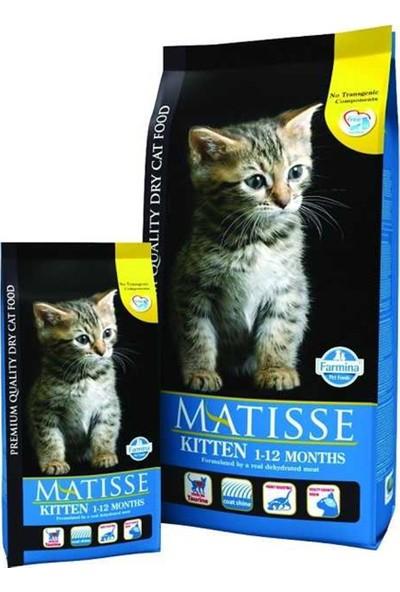 Matisse 1 - 12 Aylık Yavru Kuru Kedi Maması 10 kg Idili