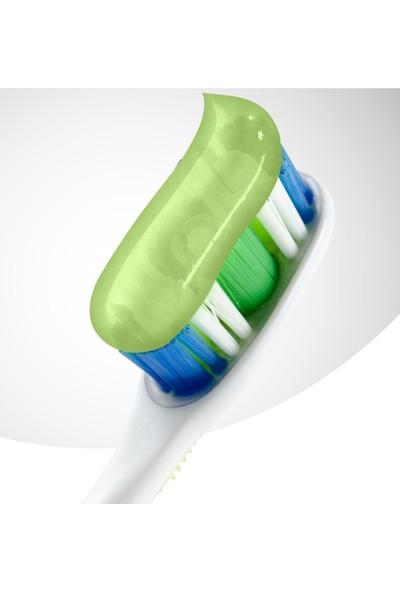 Colgate Natural Extracts Aloe Vera ve Yeşil Çay Özlü Diş Macunu 75 ml x 4 Adet + Fırça Kabı