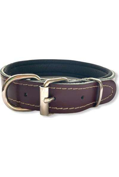Pacopet Ayarlanabilir Pati Desenli Iç Kısmı Petli Deri Köpek Boyun Tasması - Bordo 2,5X55 cm