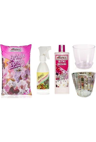 Gül Çiçek Sarayı Orkide Büyük Set, Delikli Orkide Saksısı, Orkide Ilacı, Orkide Vitamini Besini, Orkide Saksısı, Orkide Toprağı