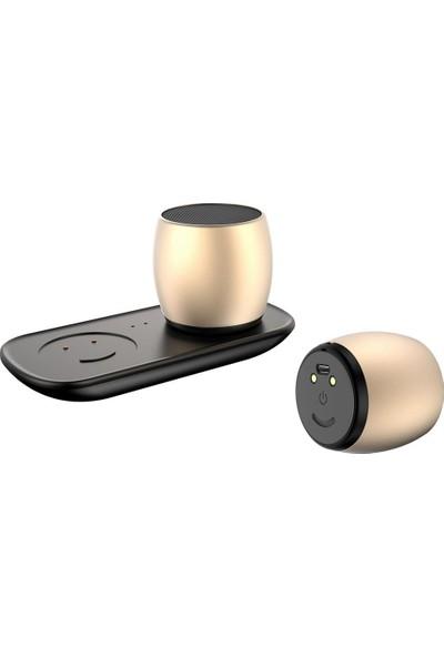 Mobitell Sardine F1 Çiftli Şarj Docklu Bluetooth Hoparlör Gold