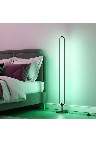Ekon Dekoratif Rgb LED Lambader 16 Renk