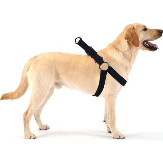 Evene Köpek Tasması Köpek Gögüs Boyun Ayarlanabilir Fonksiyonel Evcil Hayvan Tasma