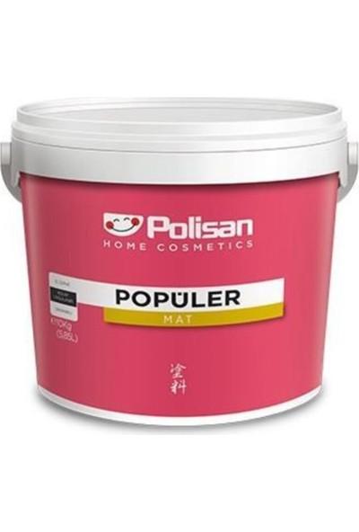 Polisan Popüler Plastik Boya 10 kg / 5,85 Lt 4295 Harran Cİ-7232