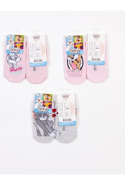 Looney Tunes Lisanslı 6 Çift Çocuk Patik Çorap 18224