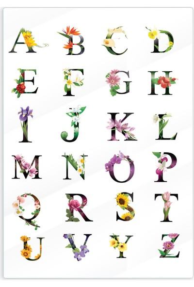 Alaca Sanat Epoksi Kuru Çiçek, Yaprak, Kaktüs, Harf, Alfabe Temalı Şeffaf Baskılı Sticker