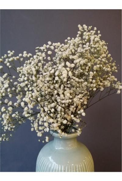 Mermaid Home Kuru Çiçek Şoklanmış Dökülmeyen Natural Beyaz Cipso